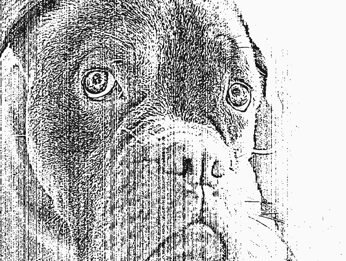 Stipplr Distressed Photocopy Texture Excited Pitbull