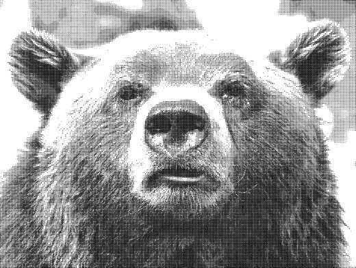 Stipplr Photoshop Benday Dot Technique Brown Bear Face