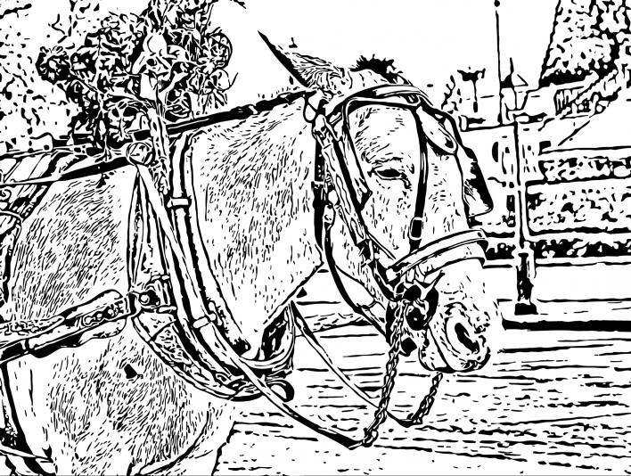 Stipplr Inker Auto Trace for Photoshop Horse And Carriage