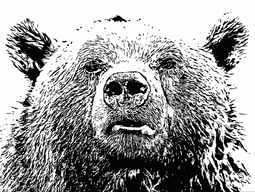 Stipplr Inker Live Trace for Photoshop Brown Bear