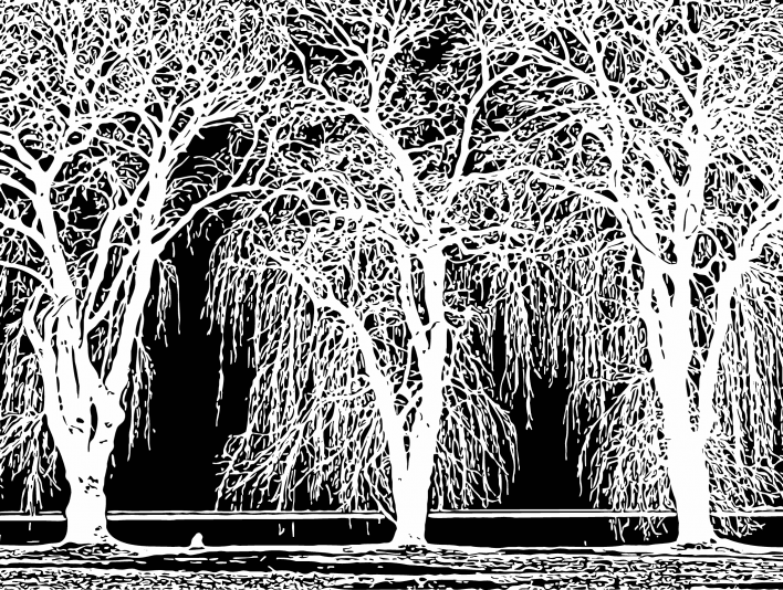 Stipplr Inker Live Trace for Photoshop Lakeside Trees