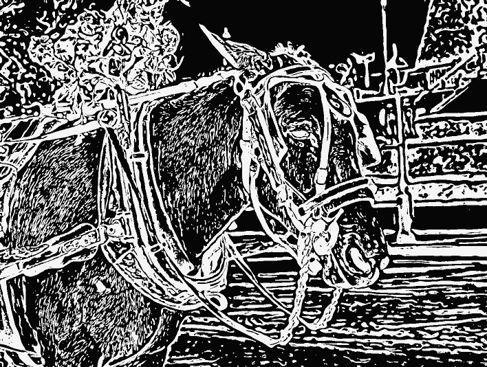 Stipplr Photoshop Auto Trace Horse and Carriage