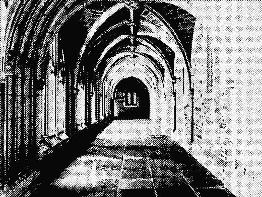 Stipplr Screentone Photoshop Vector Tracing Stone Cathedral Hallway