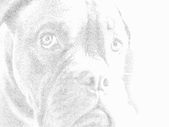 Stipplr Photoshop Loose Stipple Pitbull Hedcut