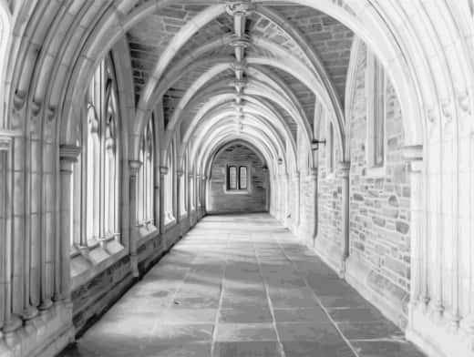 Stipplr Photoshop Vector Trace Grayscale Cathedral Stone Hallway