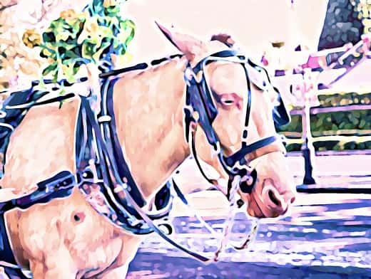 Stipplr Photoshop Cartoonize Action Horse and Carriage