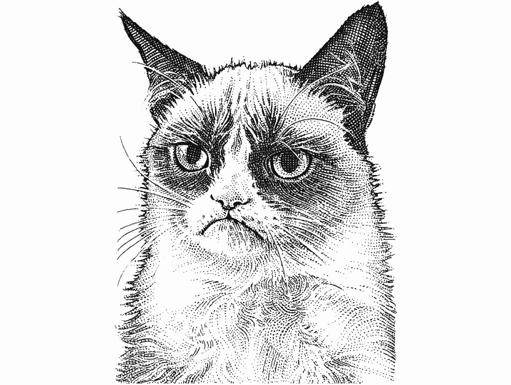 Stipplr Grumpy Cat Stipple Hedcut By Noli Novak From The Wall Street Journal