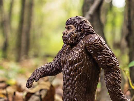 Stipplr Stock Photo Archie McPhee Plastic Toy Bigfoot Walking Through Green Forest