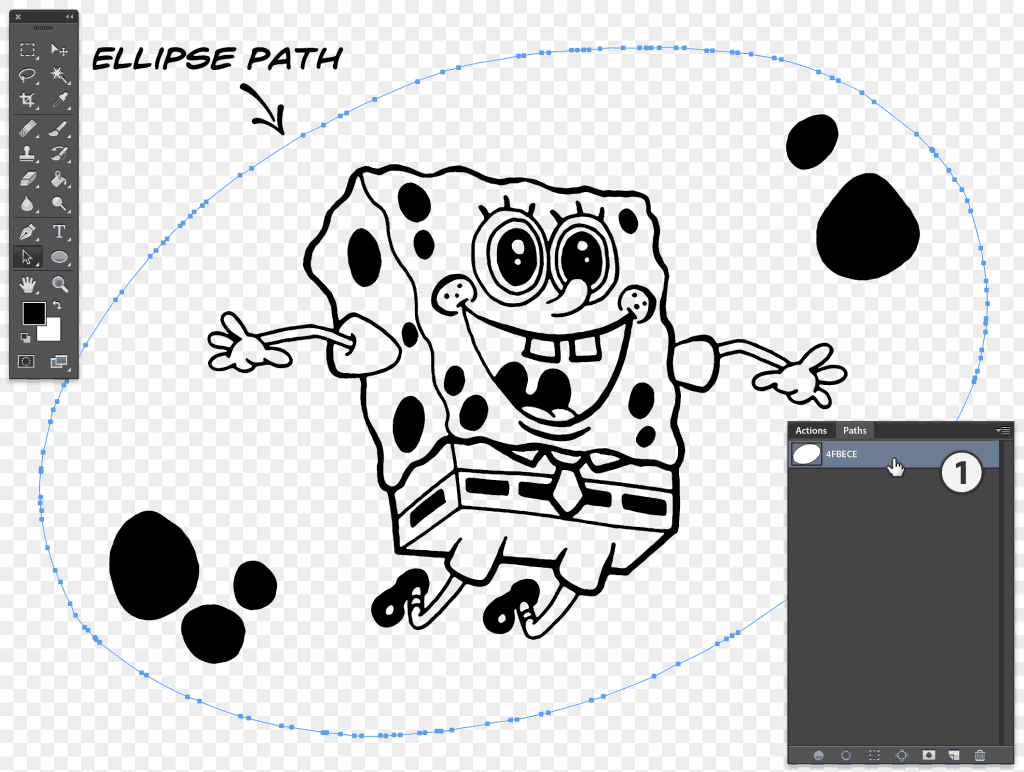 Ellipse path data pasted to the newly created path layer