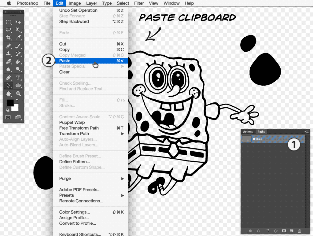 Paste the clipboard contents onto the newly created path layer